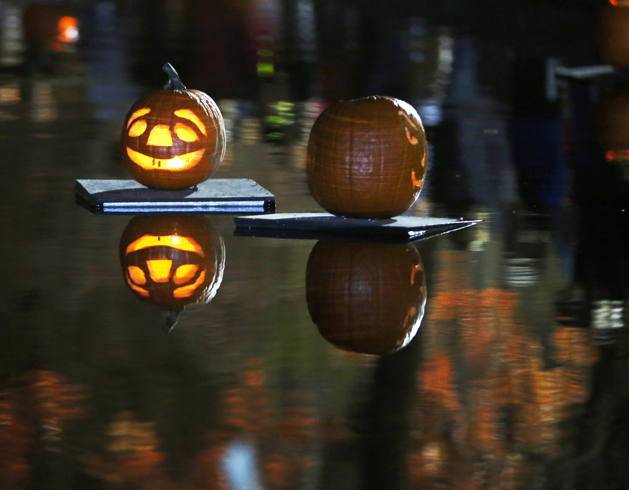 Sailing pumpkins